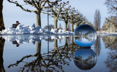 Spiegelungen am Zugersee-Ufer. (Bild: Daniel Hegglin (Zug, 8. Februar 2019))