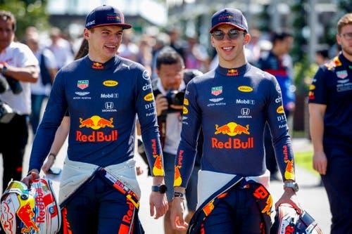Die Red-Bull-Honda Piloten Max Verstappen (links, NED, 21) und Pierre Gasly (FRA, 23). Verstappen: 81 Starts, 5 Siege, 670 WM-Punkte. Gasly: 26 Starts, 0 Siege, 29 WM-Punkte. (Bild: Diego Azubel/Epa (Melbourne, 14. März 2019))