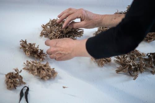 Für die Überarbeitung des Wandbildes «Nachbarschaft» greift Künstlerin Ursula Stalder auf Meerespflanzen zurück, die sie an der englischen Südküste gesammelt hat. (Bild: Pius Amrein, Luzern, 18. März 2019)