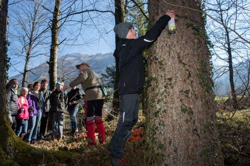 Oberstufenschüler von Nidwalden verbringen den Schultag im Wald. (Bild: Eveline Beerkircher, Wolfenschiessen 21. März 2019)
