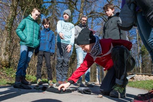 Oberstufenschüler von Wolfenschiessen verbringen den Schultag im Wald. (Bild: Eveline Beerkircher, Wolfenschiessen 21. März 2019)