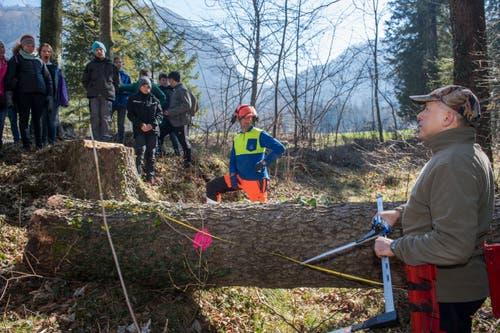 Oberstufenschüler von Wolfenschiessenverbringen den Schultag im Wald. (Bild: Eveline Beerkircher, Wolfenschiessen 21. März 2019)