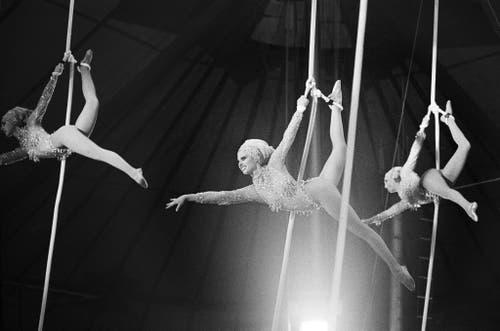 Unter Anleitung und Mitwirkung von Germaine Knie-Theron treten sieben Frauen in einem Luftballett am Vertikalseil auf, aufgenommen am 15. März 1975. (Bild: Keystone /Str)