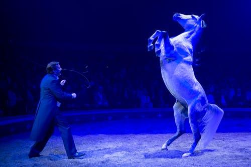 Fredy Knie Jun. während seinem Auftritt an der Premiere zur 100-Jahre-Jubiläumstournee des Circus Knie in Rapperswil (SG), am Donnerstag, 21. März 2019. (Bild: Keystone/Melanie Duchene)