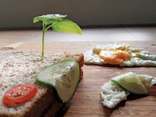 Diese Brotkünstlerin liess sich von Salvador Dalis Bild «Die Beständigkeit der Erinnerung» inspirieren. (@moonawagner)
