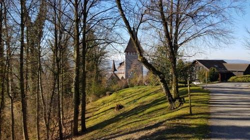 Es geht weiter durch den Wald, bis das Schloss Weinfelden zu sehen ist.