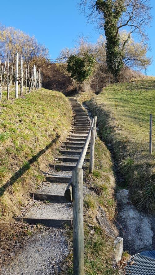 Diese Treppe führt auf die erste Anhöhe.