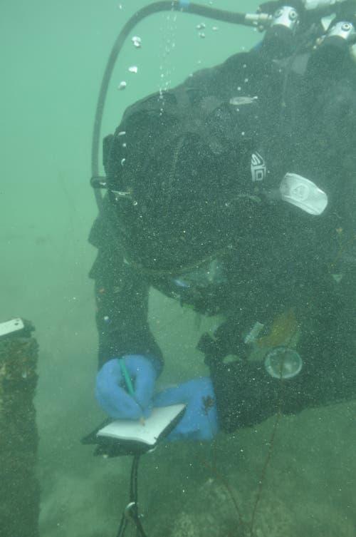 ... und Notizen. Was unter Wasser gar nicht so einfach ist. (Bild: PD)