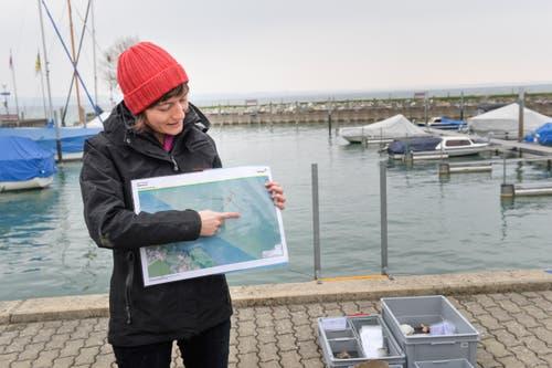 Archäologin Iris Hutter zeigt eine Karte der Fundstelle, die etwa 240 Meter vom Ufer entfernt liegt. (Bild: Donato Caspari)