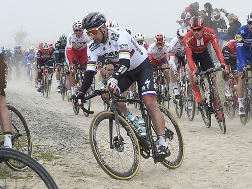 29 Pavé-Abschnitte mussten die Radprofis - im Bild Weltmeister Peter Sagan - auf dem Weg nach Roubaix absolvieren (Bild: KEYSTONE/AP/STRINGER)