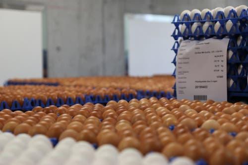 Im Rohlager warten die Eier darauf, gefärbt zu werden. (Bilder: Tobias Söldi)