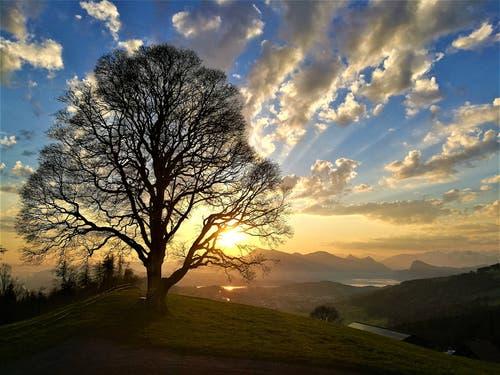 Traumhafter Sonnenaufgang heute Morgen auf dem Holderchäppeli/LU. (Bid: Urs Gutfleisch, Holderchäppeli, 19. April 2019)