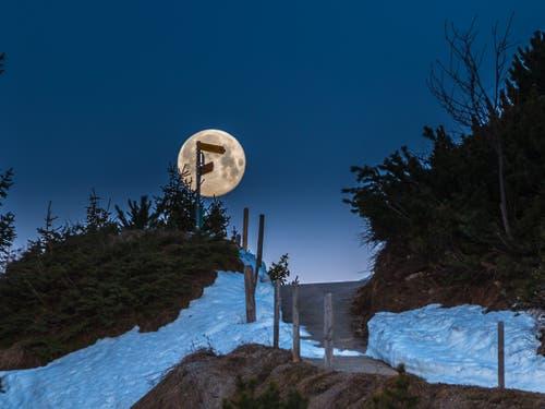 Monduntergang auf dem Stanserhorn. (Bild: Rolf Kälin, Stans, 20. April 2019)