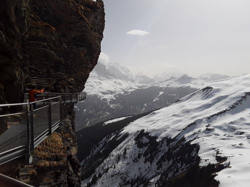 First Cliff Walk: Felssteg mit spektakulärem Blick auf den Eiger, Nervenkitzel garantiert. (Bild: Bruno Ringgenberg, First ob Grindelwald, 22. April 2019)