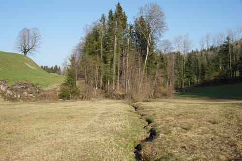 Hinter dem Schiessstand ist das Moorgebiet noch nicht fertig.