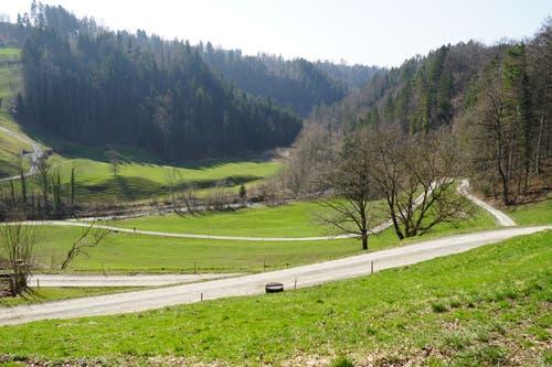 Die Tobelmühle. Der Feldweg verläuft zwar im Zickzack, Wanderer nehmen aber die direkte Abkürzung rechts der Lichtung.