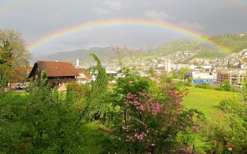 Endlich wieder mal etwas Regen. Und dann noch etwas Sonne dazu und die Szene ist perfekt. (Bild: Werner Geiger, Ebikon, 27. April 2019)