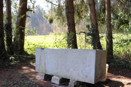 An der zweiten Feuerstelle hat es einen Brunnen. (Bild: Marlen Hämmerli)