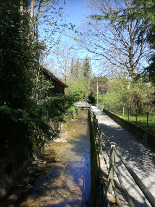In Ermatingen führt der Weg zum Bahnhof teils am Dorfbach entlang. (Bild: Marlen Hämmerli)