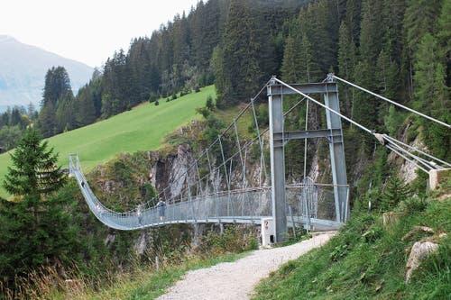 Die neue Hängebrücke überspannt die Höhenbachtalschlucht. (Bild: Bilder: Herbert Huber)