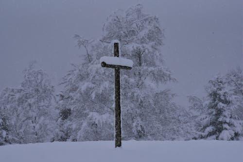 """Winter auch im Luzerner Hinterland (Napf). """"Stille Gedanken"""" sendet uns dieser Leser. (Bild: Ledi Herzog, 4. April 2019)"""