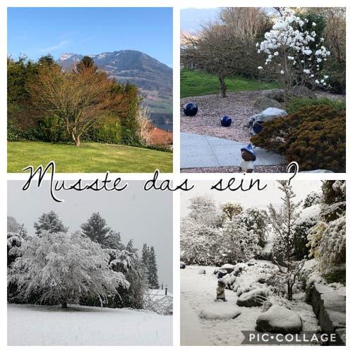 Gestern und heute; Für einmal stimmten die Wetterprognosen tatsächlich. (Bild: Margrith Imhof-Röthlin, Meggen, 4. April 2019)