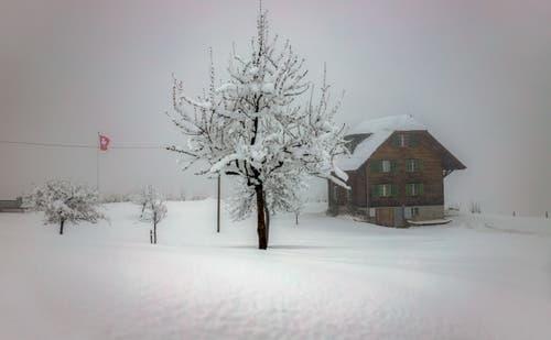 Winterstimmung auf dem Zugerberg. (Bild: Daniel Hegglin, 04. April 2019)