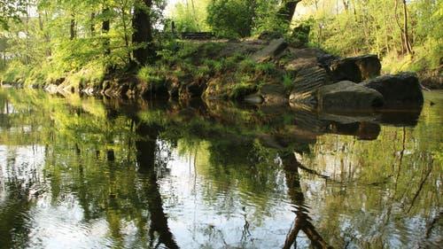 Der Frühling spiegelt sich im Wasser. (Bild: Irene Wanner, Schötz, 12. Mai 2019)