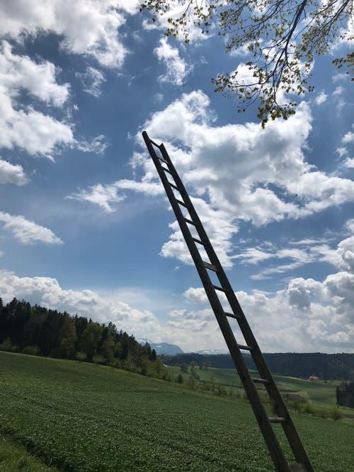 Leiter ins Jenseits, entdeckt am Wanderweg Buholz-Geiss. (Bild: Fredi Meyer, 12. Mai 2019)