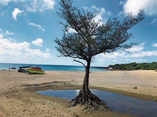 Abwechslungsreiche Küstenlandschaften und Sandstrände prägen den Süden der Insel.