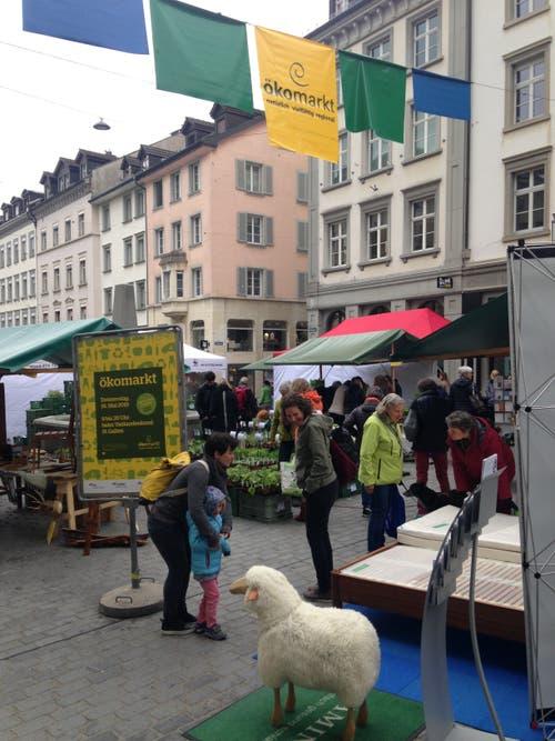 Marktkulisse mit Schaf.