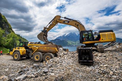 In der neuen Erweiterung Oberzingel oberhalb Kehrsiten wird der Kieselkalk abgebaut und auf Dumper verladen. (Bild: Eveline Beerkircher, Kehrsiten, 15. Mai 2019)