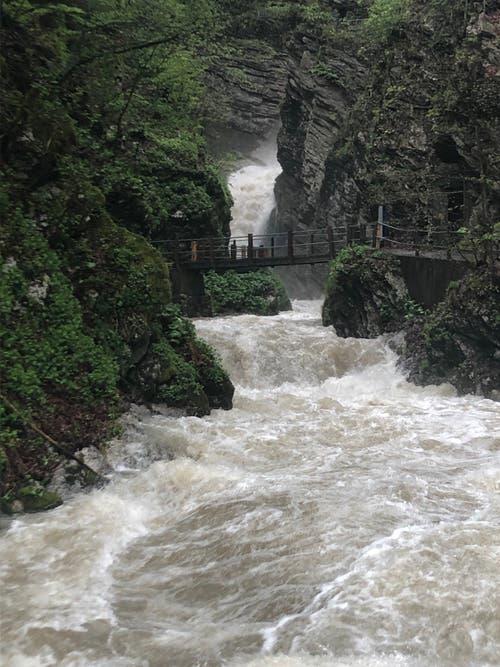 Die Thurwasserfälle führen viel Wasser. (Bild: Christiana Sutter)
