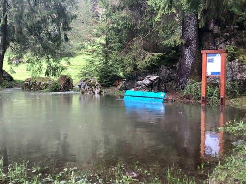 Im Obertoggenburg, auf dem Weg zu den Thurwasserfällen. (Bild: Christiana Sutter)