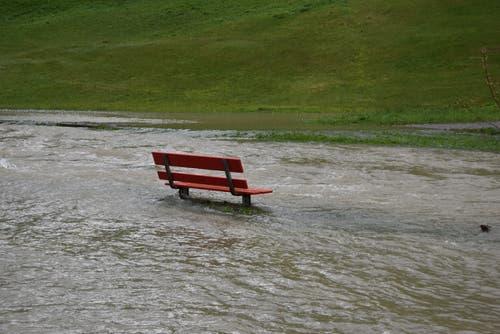 Überschwemmter Spazierweg in Alt St.Johann. (Bild: Timon Kobelt)