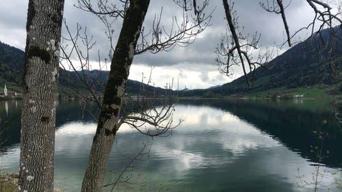 Bedecktes und wolkenverhangenes Wetter. (Bild: Peter Bumbacher, Morgarten, 3. Mai 2019)