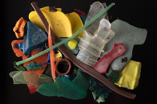 Eine Auswahl der am Strand von Mothecombe gefundenen Gegenstände. (Bild: Dan Kitwood/Getty, 31. Mai 2019)