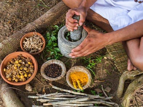 In den Bericht des IPBES ist auch das Wissen indigener und lokaler Gemeinschaften eingeflossen. Diese zeigen beispielhaft, wie eine nachhaltige Nutzung der Natur funktionieren kann - ein Leben mit der Natur und nicht auf ihre Kosten. (Bild: Nila Newsom/Shutterstock.com)