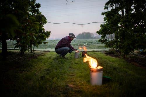 Ob die Feuer entfacht werden, entscheidet sich kurzfristig. Eine Kerze kostet rund 15 Franken und oft werden Hunderte davon angezündet.» Es geht also noch schnell mal sehr viel Geld in Flammen auf. (Bild: Gian Ehrenzeller/Keystone, Opfershofen, 7. Mai 2019)