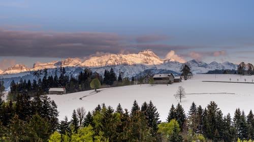 Anhaltende Winterstimmung im Appenzellerland. (Leserbild: Luciano Pau - Schwellbrunn mit Blick Richtung Säntis, 6. Mai 2019)