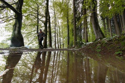 Erinnerungen ans vergangene Wochenende: Eine Joggerin auf einem Waldweg im Peter-und-Paul-Wald. (Leserbild: Ueli Bächtold - 5. Mai 2019)