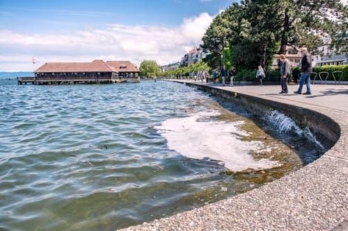 Der Bodensee bei Rorschach.