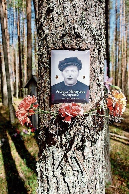 Gedenkwald: Erinnerung an die Opfer des stalinistischen Terrors.