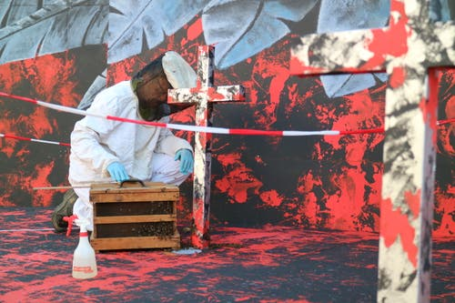 Geschafft: Der Grossteil der 1500 Bienen sitzt in der Kiste. (Bild: Beda Hanimann - 17. Juni 2019)