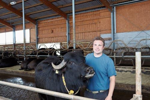 Ein Herz und eine Seele: Jan Künzle mit einer Büffeldame, die nicht genug von den Streicheleinheiten bekommt. (Bild: Bilder: Dinah Hauser)