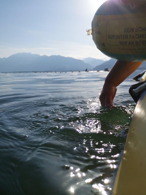 Wer kann, kühlt sich beim «Böötle» auf dem See, hier auf dem Lago Maggiore, ab. (Leserbild: Bianca Fischer, Tenero, 25. Juni 2019)