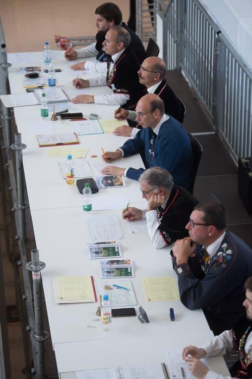 Die Jury bewertet die Darbietungen der Fahnenschwinger – und verteilt wenn nötig Strafpunkte. (Bild: Boris Bürgisser, Horw, 28.06.2019)