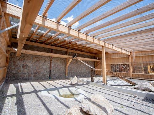 Die neue Bartgeier-Zuchtstation des Tierparks Goldau ist karg eingerichtet, wie es dem Lebensraum des Greifvogels entspricht. (Bild: Urs Flüeler / Keystone, 4. Juni 2019)