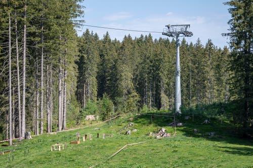 Absperrband umzäunt den Unfallbereich auf der Gerschnialp oberhalb von Engelberg. (Bild: Keystone/Urs Flüeler, 5. Juni 2019)