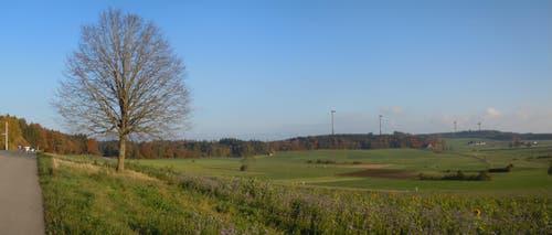 Visualisierung vom Hämikerberg in Hitzkirch. (z.V.g.)